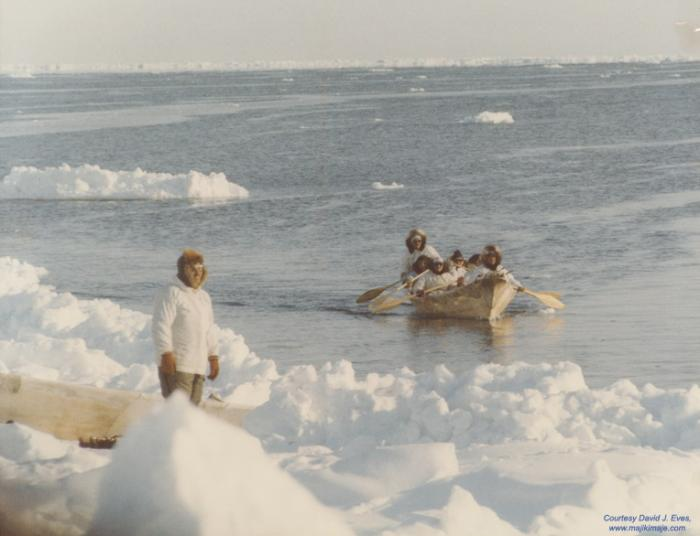 the people of the arctic ice stories dispatches from polar scientists