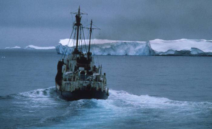 Fishing In Antarctic Waters Ice Stories Dispatches