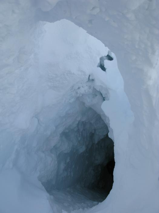 The Ice Cave Ice Stories Dispatches From Polar Scientists